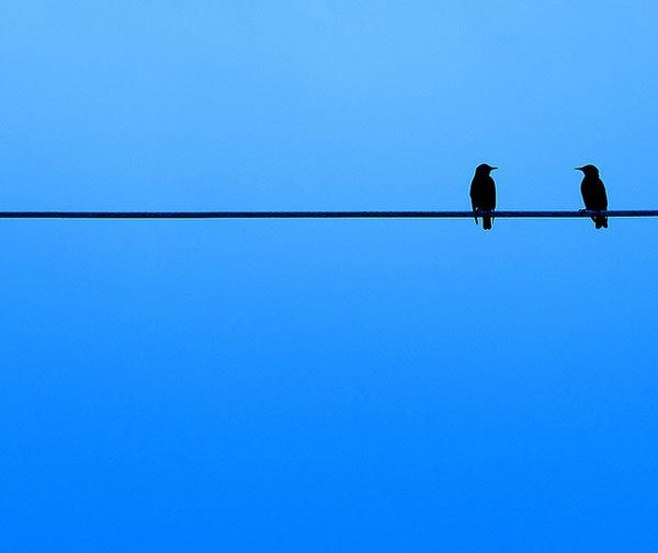 44 Wonderful Minimalist Photography Inspirations