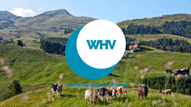 Arosa Kulm Hotel & Alpin Spa Switzerland (Europe). The best of Arosa Kulm Hotel & Alpin Spa https://youtu.be/PBYuKw6ATVE