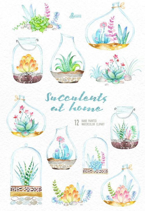 Succulents at Home. Watercolor floral Bouquets and by OctopusArtis
