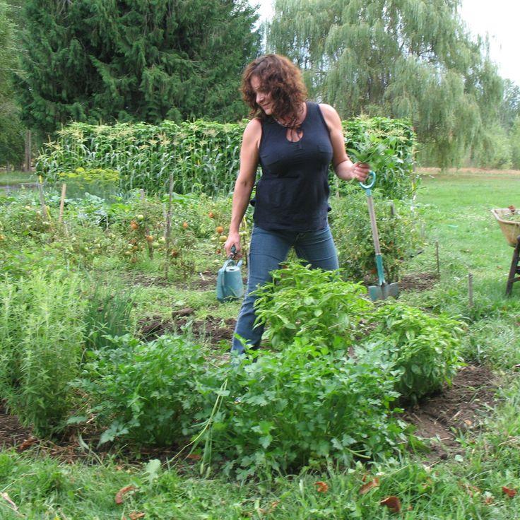 #MicheleRomano herb garden