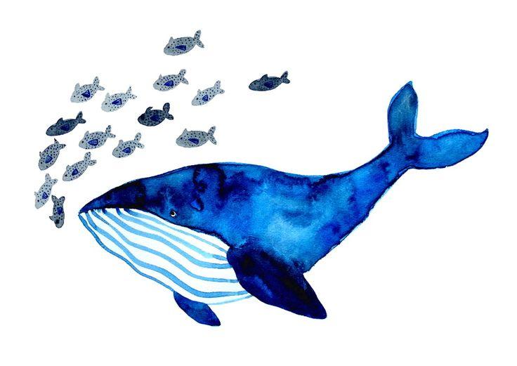 *Wal* Kunstdruck von Frau Ottilie Illustration auf DaWanda.com