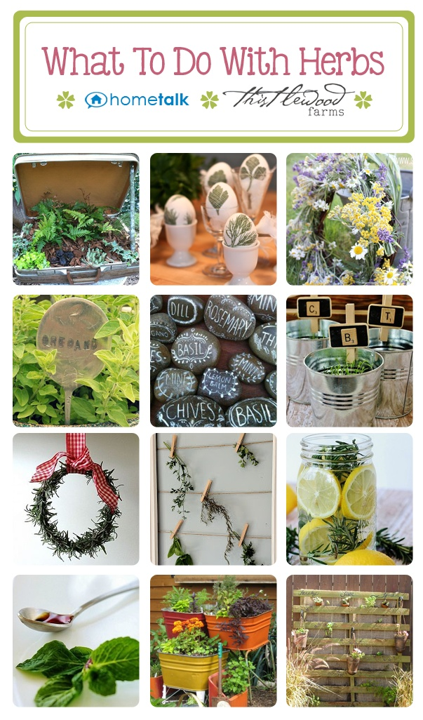 Crafts with herbs....love the plant markers and the room scents!  thistlewoodfarms.com