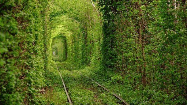 Kleven, Ukraine: train tracks pass through1.8-mile-long tree-covered tunnel