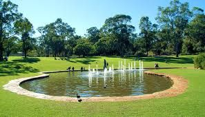 Kings Park, Perth, Australia <3
