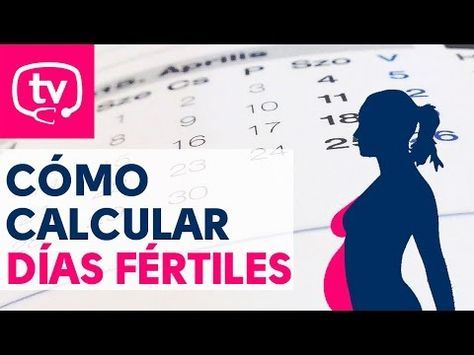 ¿Cómo calcular los días fértiles de una mujer? | Vídeos | MedicinaTV