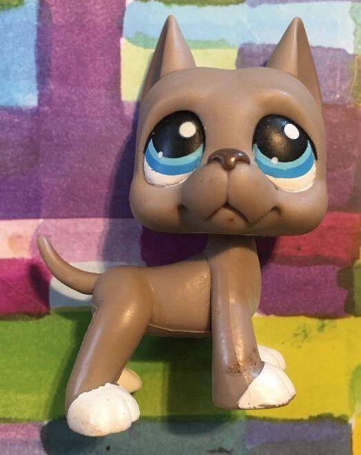 Littlest Pet Shop RARE Great Dane Dog Puppy 184 Grey White Blue Eyes LPS | eBay