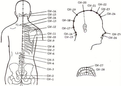 12 Potent Acupressure Points for Thyroid Problem Treatment