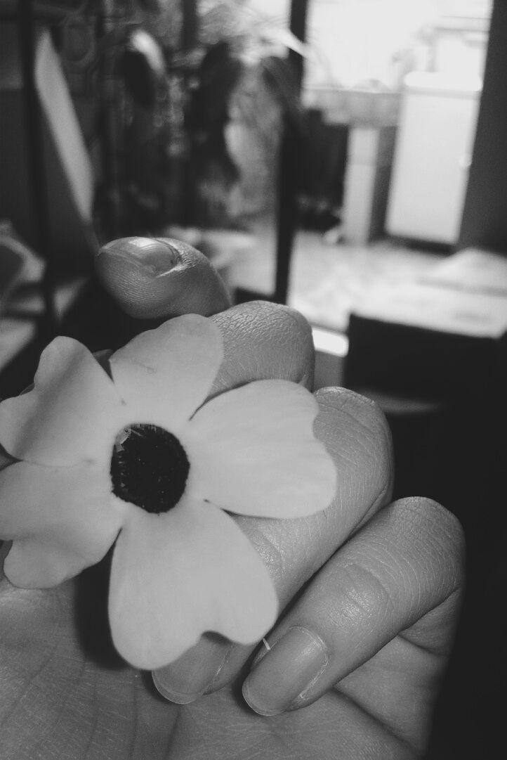 #vsco #vscocam #flowers #vsconature