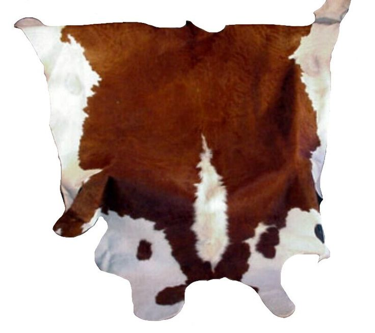 Find This Pin And More On Cow Skin Rugs By Lathantreadway.