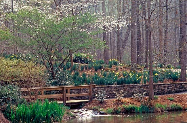 147 Best Images About Check It Out Greenville Sc And Surround On Pinterest Lakes Sliding