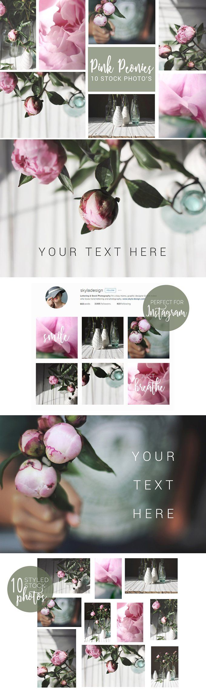 Pink peonies, styled stock photos by Skyla Design on @creativemarket #pink #peonies #flowers #floral #leaves #greenery #white #stock #styled #image #bundle #picture #frame #scene #creator #vectors #design #kit #preset #overlay #graphic #design #photoshop #lightroom #actions #brush #premade #social #media #print #download #website #digital #template #theme #blog #facebook #feminine #instagram #mockup