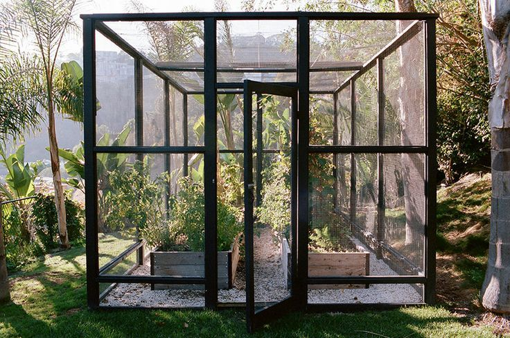 In Hollywood's hills, garden designer Lauri Kranz conceived a chic enclosure more reminiscent of the Apple store and modernist aeries than of deer fencing. Here's how to recreate the stylish edible garden: