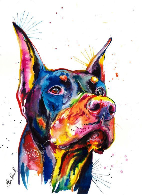 *Watermark (Weekday Best logo) will NOT be included on your print! If a doberman pinscher is your kind of dog, youll like this painting! This is a print of my original watercolor painting in bright and bold colors and some spatters. I love to paint in bright colors to bring out a pets personality. Choose from 5x7, 8x10, 11x14 or 13x19 inch prints in portrait format. This Archival Matte Paper features a smooth surface, heavy weight (230 g, 9.5-mil), neutral white, matte paper engineered…