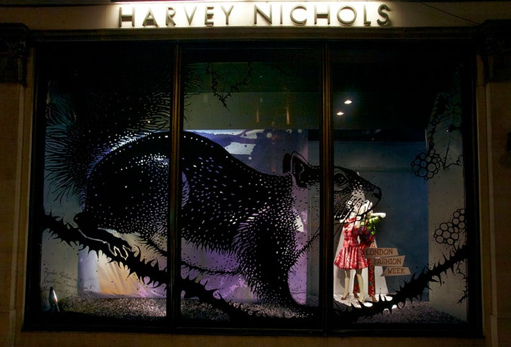 1000 images about windows on pinterest frozen christmas for Harvey windows
