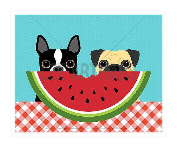 182D Dog Print  Boston Terrier and Pug Dog Eating by leearthaus