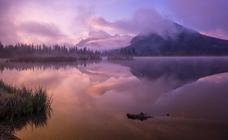 Daily Dozen for Aug. 31, 2015 — Photos -- National Geographic Your Shot
