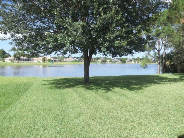 Find this home on Realtor.com. nice home. cathedral ceilings, hip roof. open concept, on the water, shade tree, large screened patio.