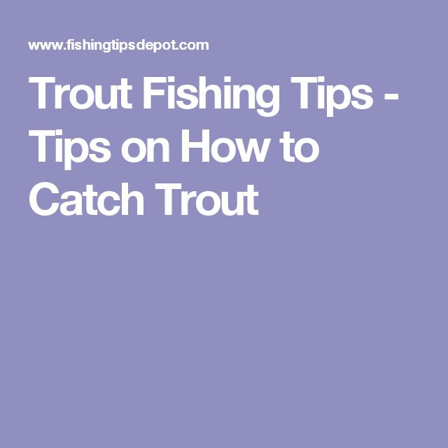 Trout Fishing Tips - Tips on How to Catch Trout