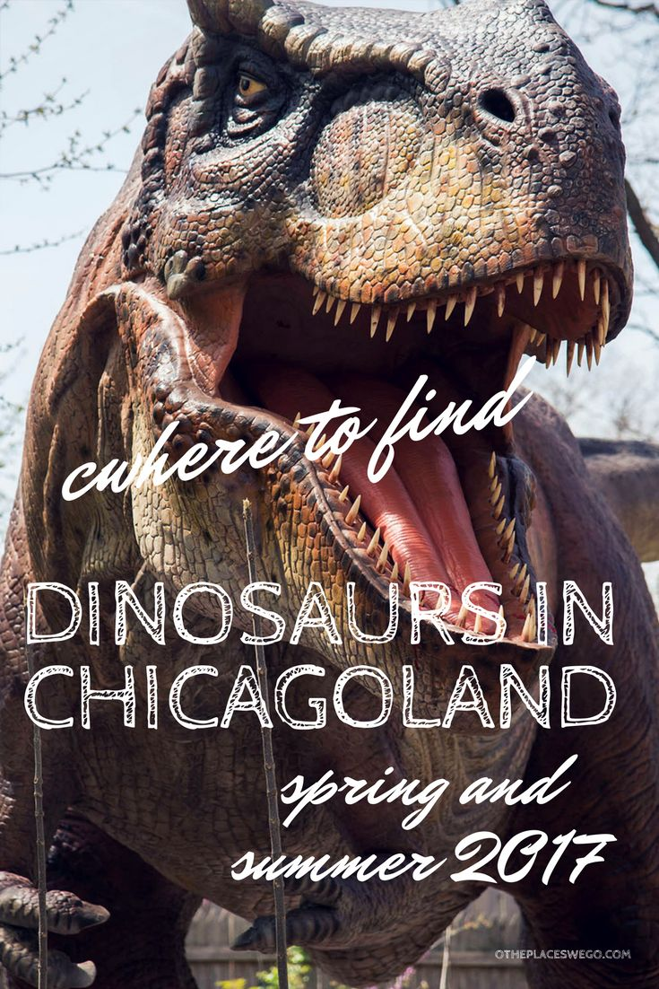 Northwest Suburbs Chicago Map%0A Dinosaurs invade Chicagoland this spring and summer