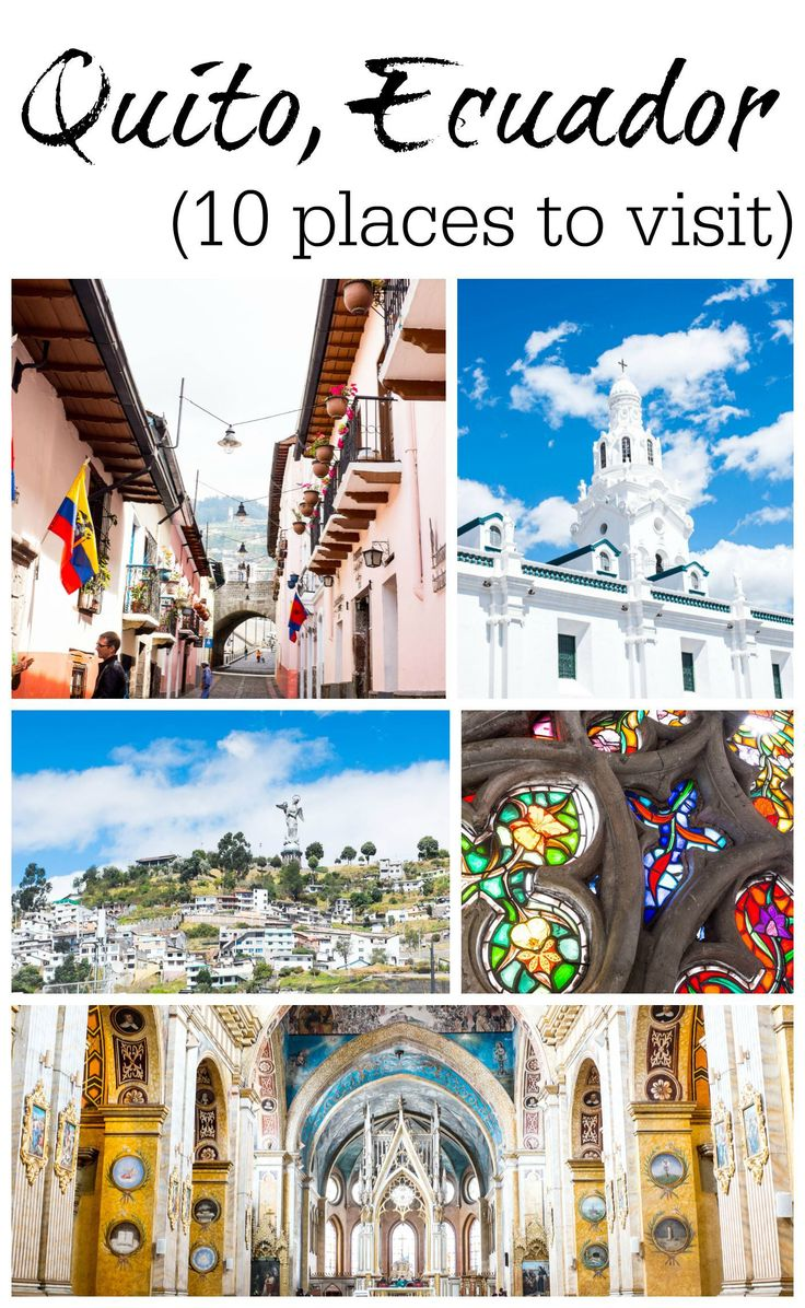 Best South America Images On Pinterest Places To Visit Cow - Underrated escapes 10 tips and tricks for discovering quito ecuador