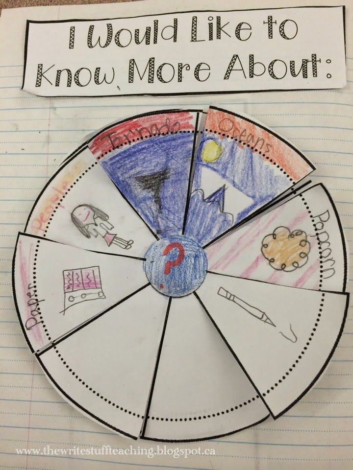 Genius Hour: The First Few Weeks 2nd and 3rd grade