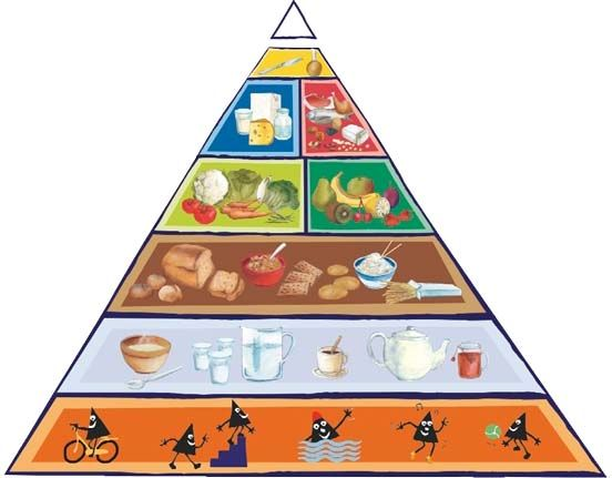 Voedingsdriehoek