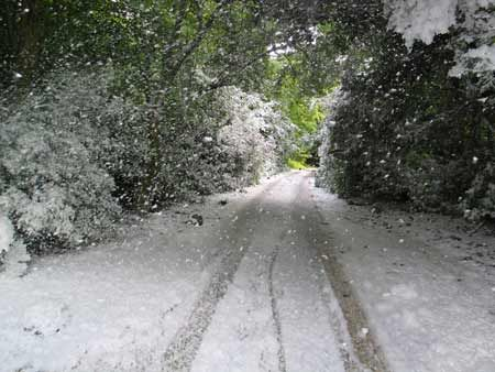 I miss snow!