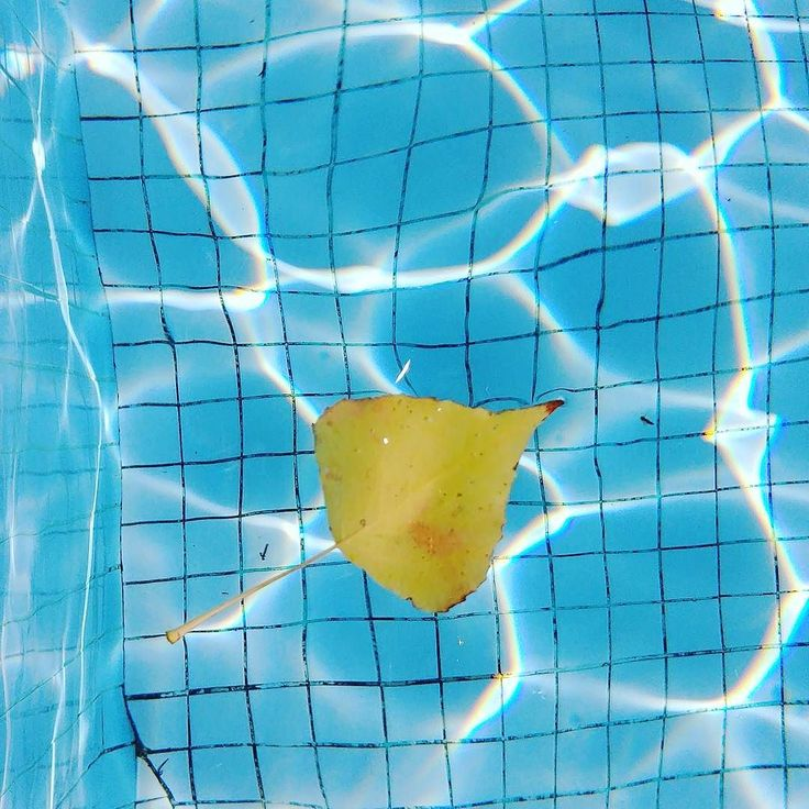 Autumn is definitely there but luckily we still have sunshine and can enjoy the pool at 25 degrees . Wishing you a nice week with lots of energy ! #myholidaysinprovence