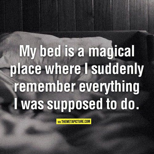 My bed is a magical place… | Laughter is the best medicine | Pinterest | Funny, Quotes and Humor