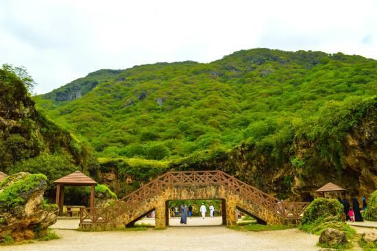 Salalah – The Magnificent Omani Sight to Discover on Holidays