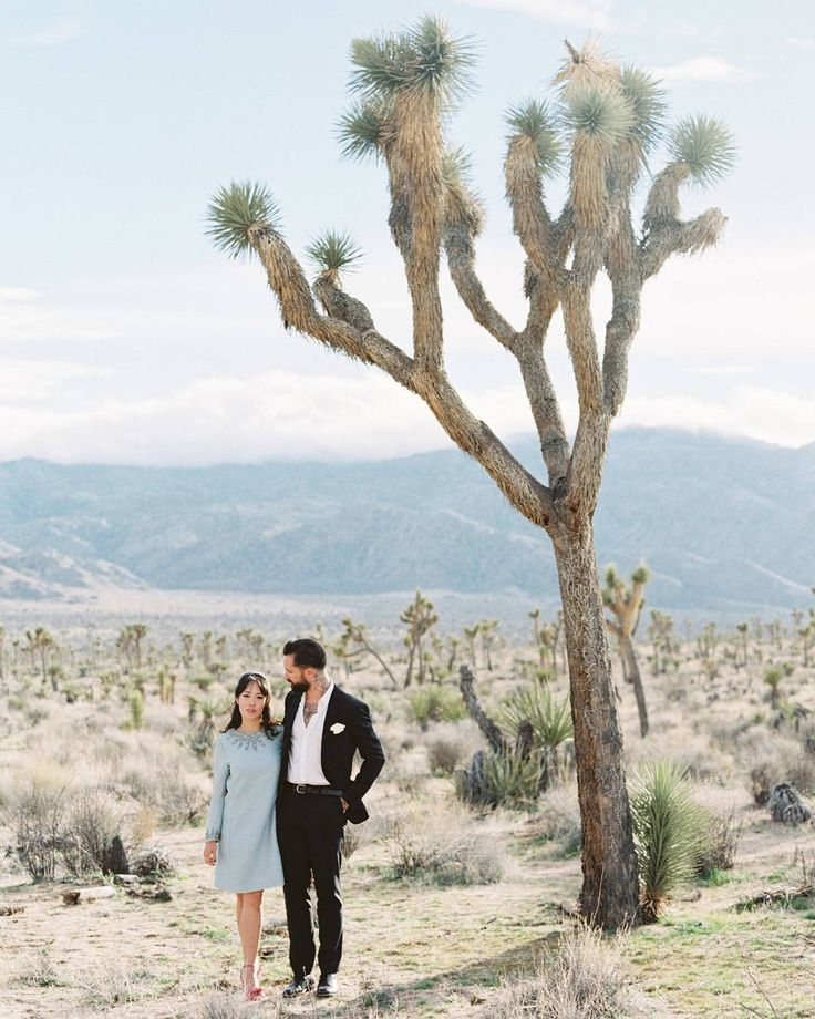 After 3 months together, these Australia-based love birds decided to get married and as a joke, rolled the dice to land on Joshua Tree. 🎲 Guess what...it stuck! See this how this laid-back elopement came together #onGWS! {link in bio)🌵⚡️ photog: @thismodernromance | venue: @echoranchhouse | dress: @gardenstudy | shoes: @charlotte_olympia | rings: @windfalljewellery | groom's attire: @filippa_k | groom's shoes: @loakesverige | cake: @susiecakesbakery | rentals: @circavintagerentals