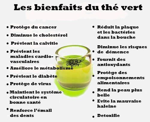 Les 16 bienfait du thé vert sur la santé avec deux tasses par jour
