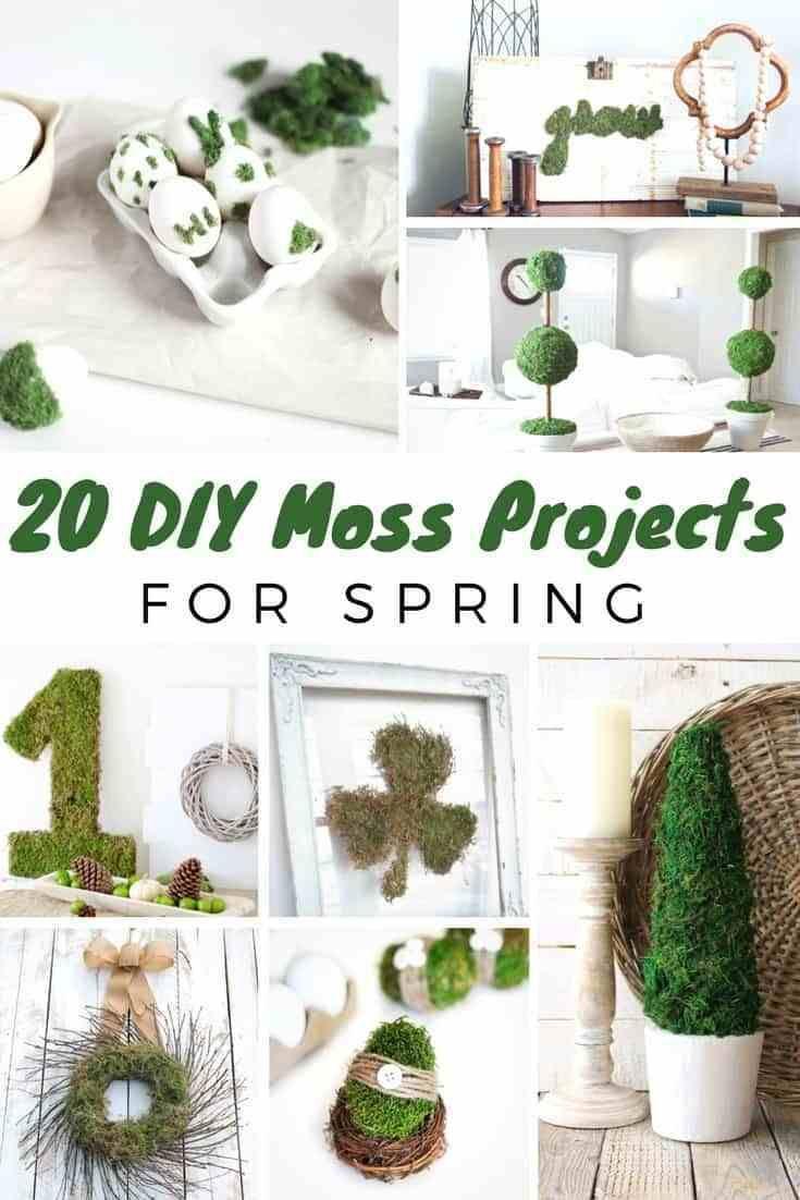 20 Diy Moss Decor Ideas For Spring Moss Decor Spring Diy