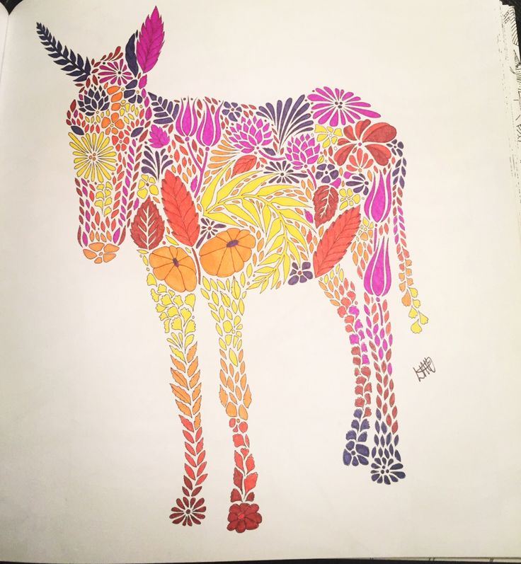 My Little Donkey From Millie Marottas Animal Kingdom