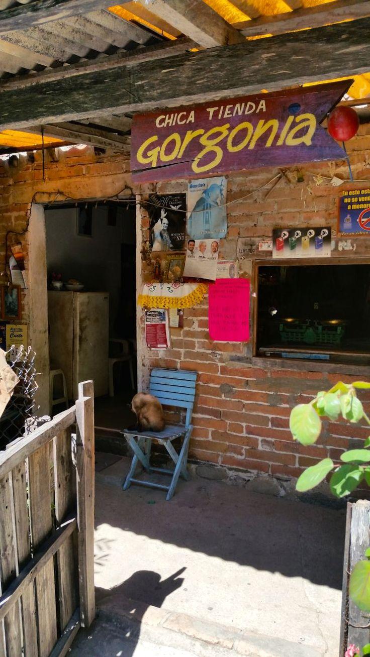 Yelapa, Jalisco, Mexico #pvpresstrip #famtimePV