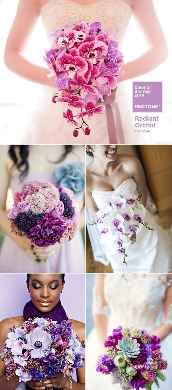 Radiant Orchid – Color del año 2014!