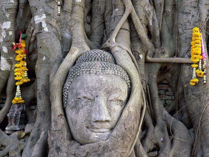 Buddha Old In Ayuthaya Thailand