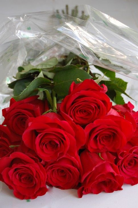 had a dozen roses delivered, Mom cried. She said no one had ever sent her roses......I cried, I never knew...........