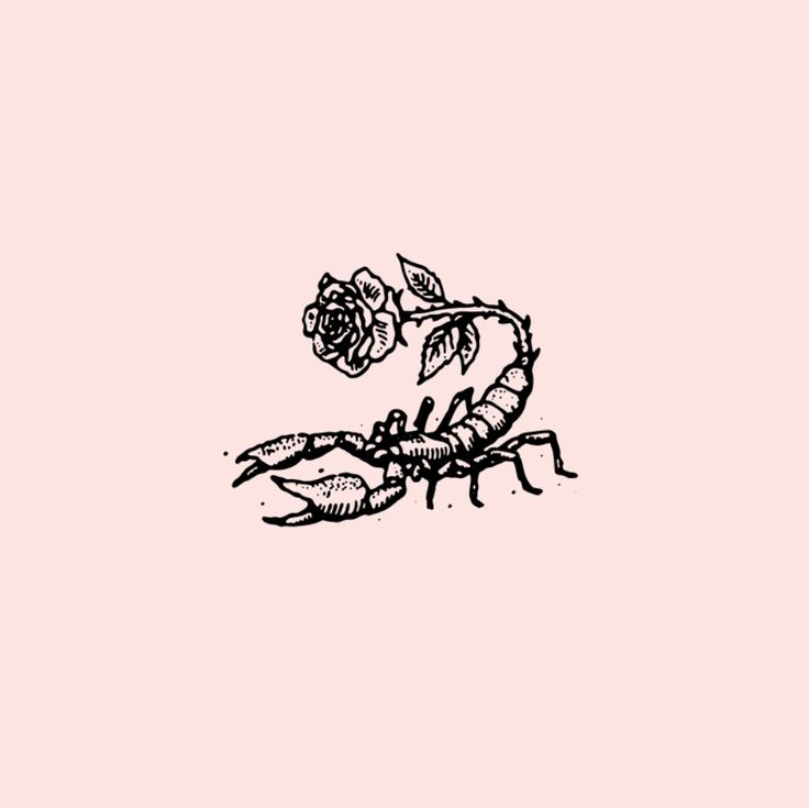 This would be a good tattoo whoever is a scorpio.