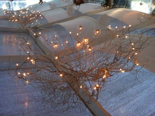 51 best sydney wedding ideas images on pinterest sydney wedding twisted willow with fairy lights and candles wedding reception at turpentine tree kurrajong workwithnaturefo