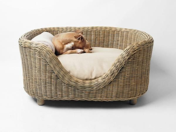A Unique And Stunning Raised Wicker Dog Bed Handwoven In Beautiful Rattan From Award Winning British