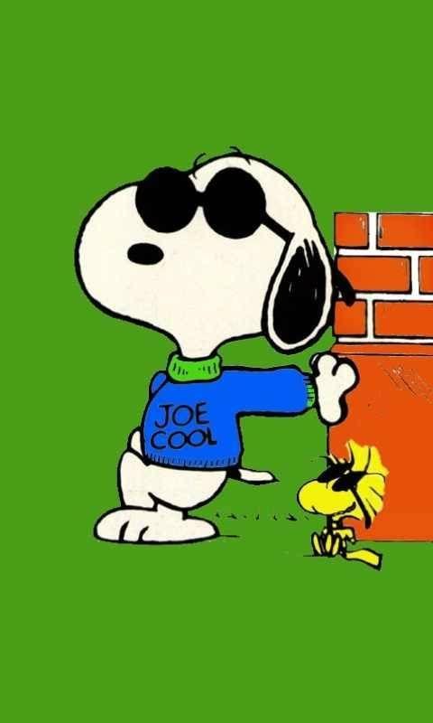 Joe cool & Woodstock~