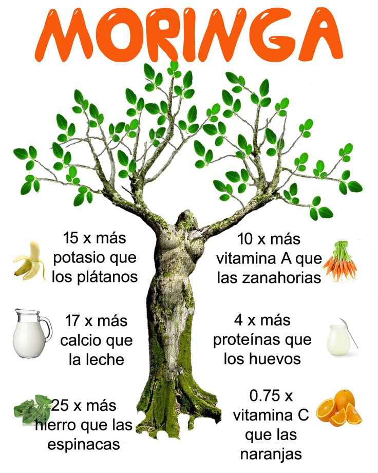 Moringa info-graphic spanish
