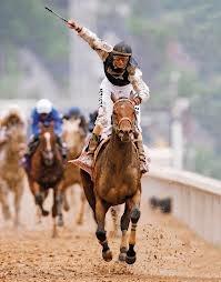 Thoroughbred-horse-racing.