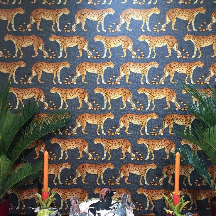 Ardmore, Cole & Son, Leopard Walk Wallpaper