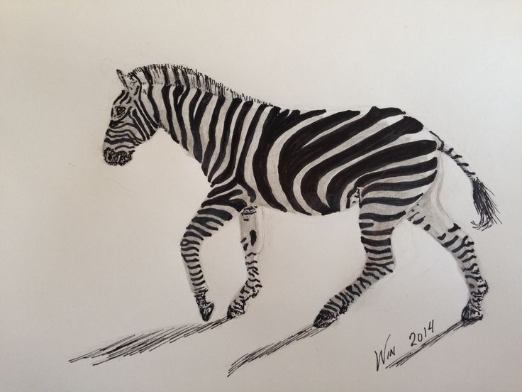 Met this character two or three years ago.  The stripes intimidated me, so I didn't think it would find its way into my artwork - but it did! #zebra