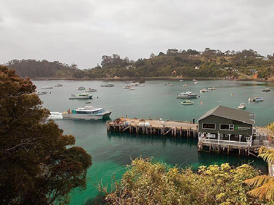 Google Image Result for http://media-cdn.tripadvisor.com/media/photo-s/01/c2/37/91/stewart-island-ferry.jpg