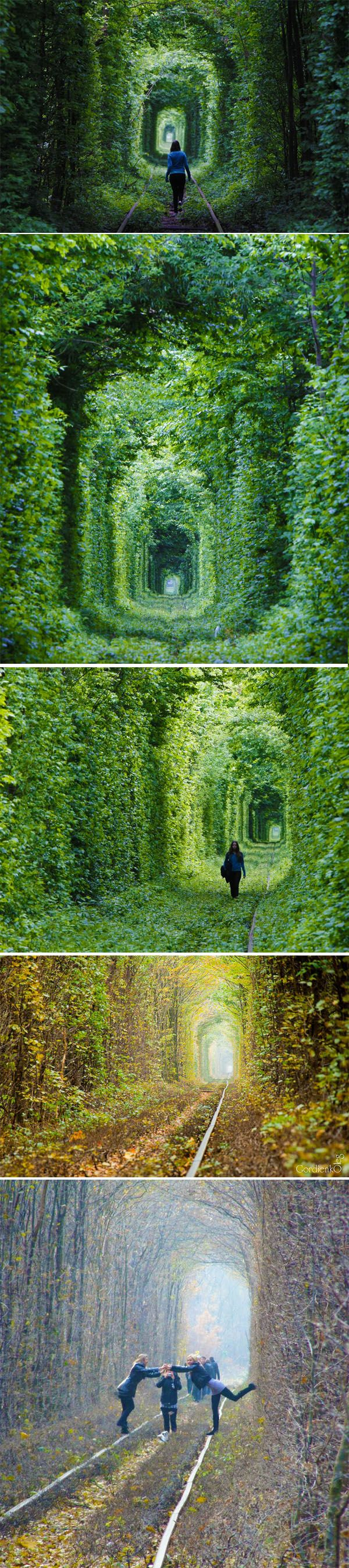 "Tunnel of Love"" :: located in Kleven, Ukraine (Yet, another odd and unique place on earth.)"