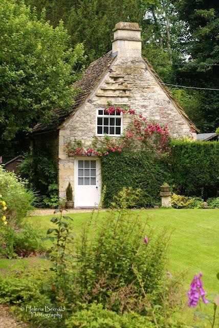 Cottage garden, climbing rose...