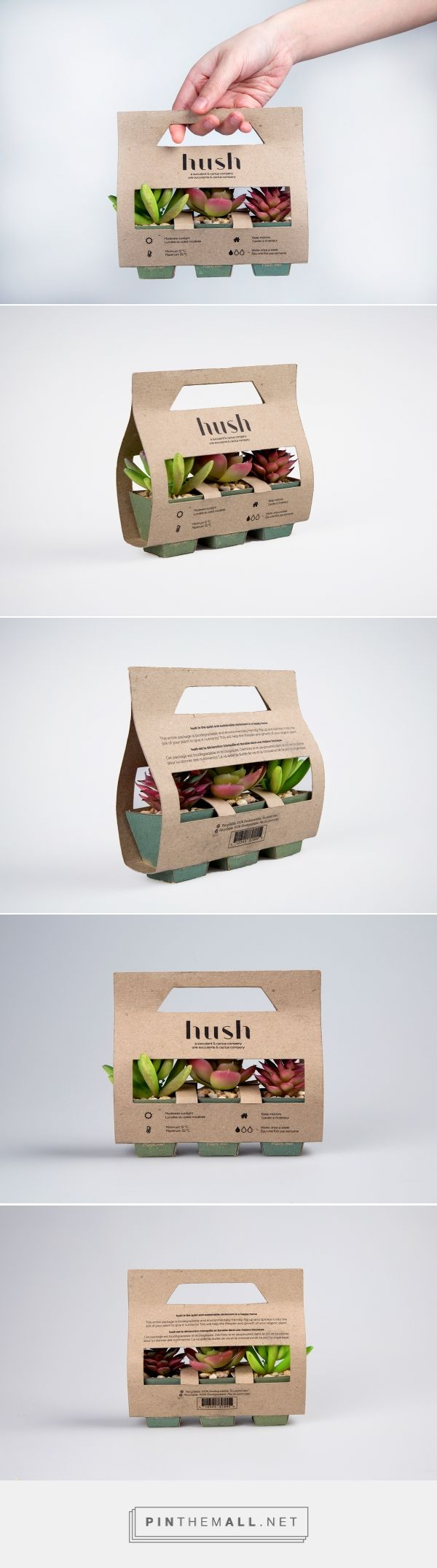 Simple, practical and beautiful packaging for succulents and cacti. Hush succulents and cacti company by Samantha Goh. Source: Behance. Pin curated by#SFields99#packaging #design #inspiration #ideas #innovation #creative #structural #product #branding #plants #succulents #cacti